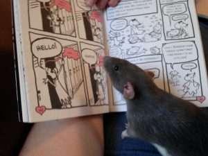 Ziva reads Babymouse